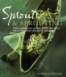 Sprouts_300_15cm
