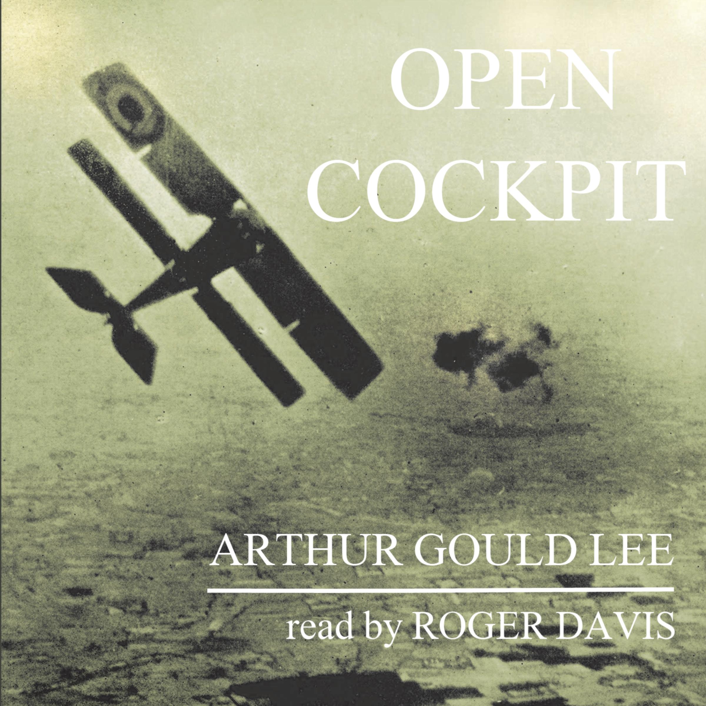 Open Cockpit  resize