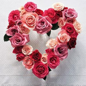 23.01.19 Valentine rose heart